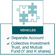 Vehicles - Separate Account and Collective Investment Trust and Mutual Fund (Y and K shares)