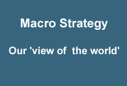 4 Investment pillars- Macro Strategy: our 'view of the world'.