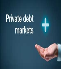 2016-12 - The many attractions of private debt markets