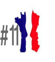 French elections #11