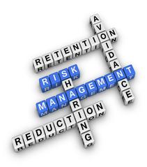 Risk Management Minimise Reduce