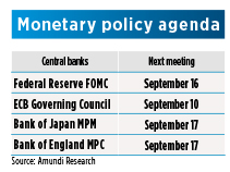 Dev countries - Monetary policy