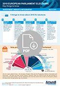 European elections Infographic - Icon