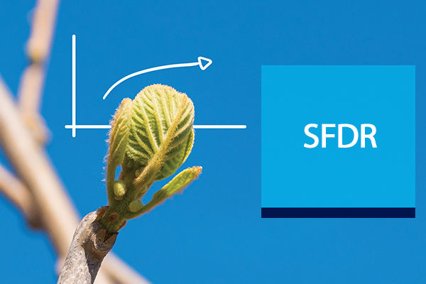 New regulation SFDR