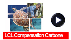 235x132 video compensation carbone