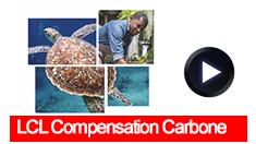 235x132 video compensation carbone
