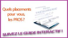 235x132_bannière guide interactif pro
