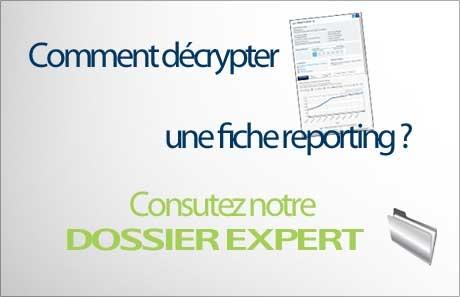 460x297_dossier expert reporting vert