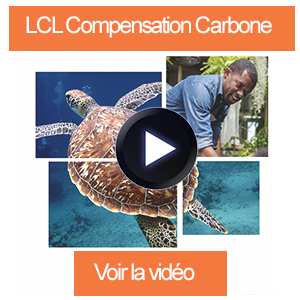 300x300 video compensation carbone