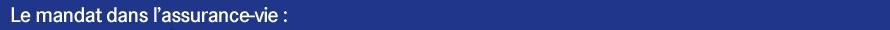 bandeau bleu mandat AV